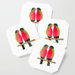 Australian Collared Lory Birds Coaster