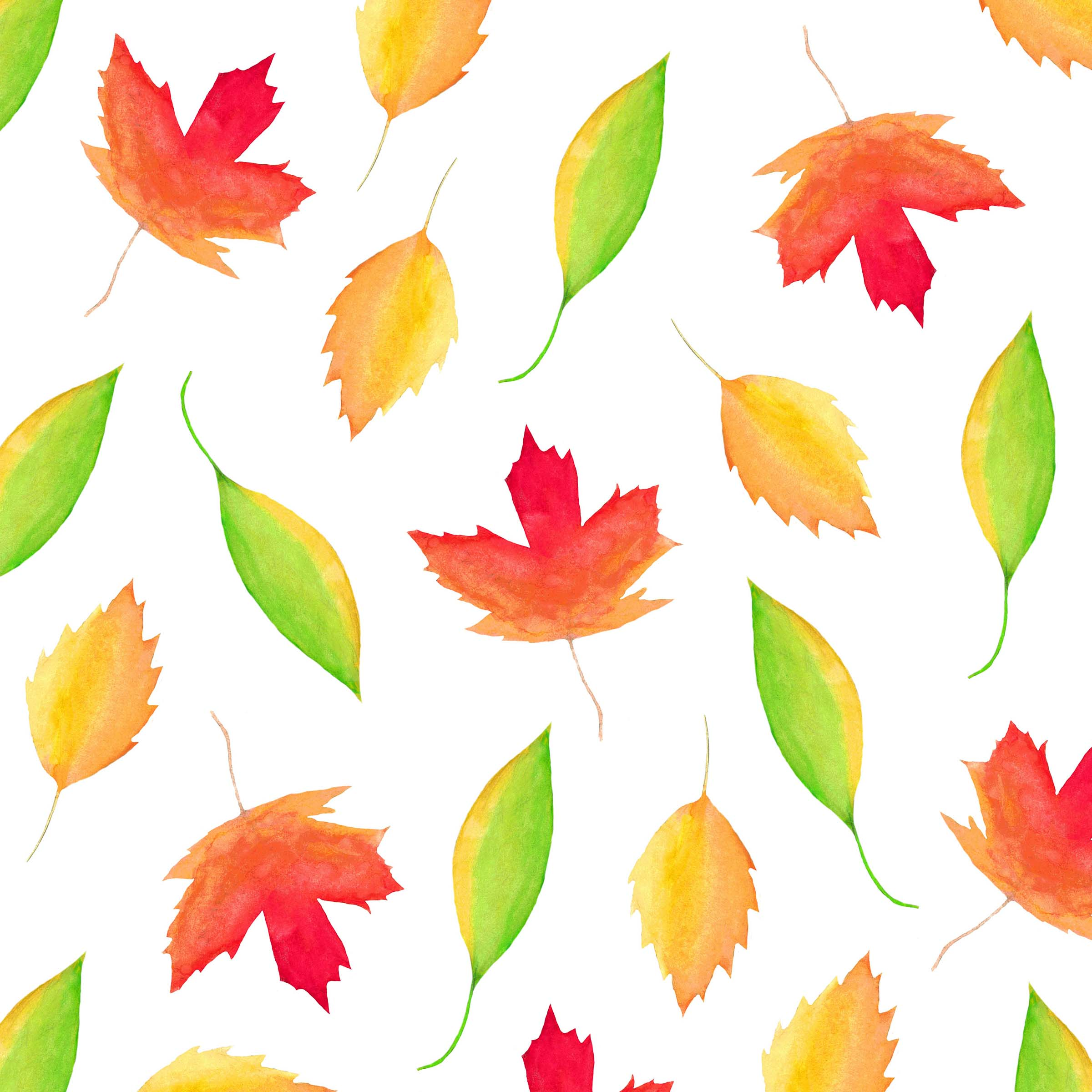 Fall Leaves Watercolor Print by Aliya Bora