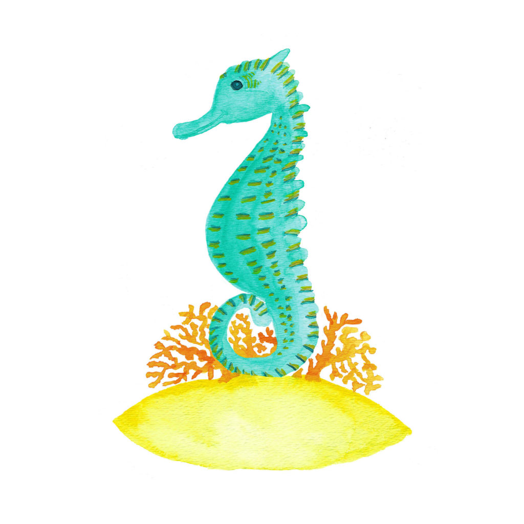 seahorse life watercolor painting by Aliya Bora