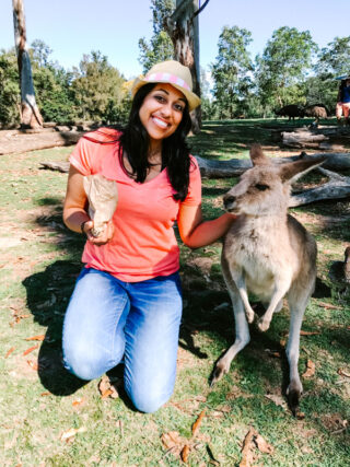 Top Things to See in Australia's Gold Coast & Brisbane